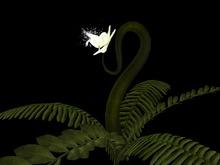 {Papillon} Alien Orchid