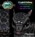 Folly noodlecrystalhelmad obsidian