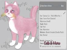 KittyCatS Box - Chateau Cat - Pink & White No. 1 with Fancie Rose Diamond Eyes