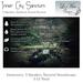 Inner City Sanctum Ambient Sound System