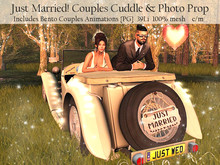 LOVE - JUST MARRIED - COUPLES CAR - CUDDLE & PHOTO PROP