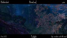 Balderdash - Brine Leaf - Twilight (Wear/add to open!)