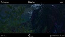 Balderdash - Brine Leaf - Green (Wear/add to open!)