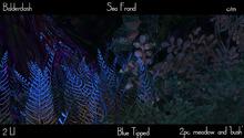Balderdash -Sea Frond - Blue Tipped - (wear/add to open!)