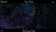 Balderdash -Junction Algae - Chaos Shrub - Non Flowering Violet