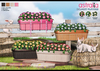Astralia - Balcony Flowers (Pack 1- Pink and Red)