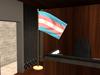 Transgender 064