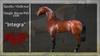 """*RMH* Teegle Horse/Pet coat """"Integra"""" - Boxed"""