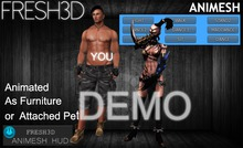 Fresh3D Warrior Girl ANIMESH-DEMO