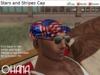 Ohana Stars and Stripes Cap
