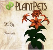 PlantPet Seed [Lily *Firelight*]  Updated2019
