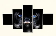 Blue Eyed Panther