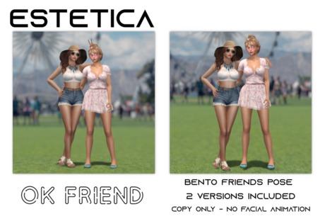 estetica: OK friend - 2 person bento poses