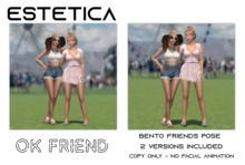 estetica: OK friend - 2 person bento poses