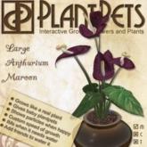 PlantPet Seed [Large Anthurium *Maroon*]