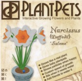 PlantPet Seed [Narcissus *Salome*] Updated 2019