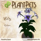 PlantPet Seed [Lily *Eileen*] Updated