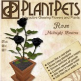 PlantPet Seed [Rose *Midnight Desires*]