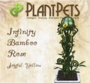 PlantPet Seed [Infinity Bamboo Rose *Joyful Yellow*]