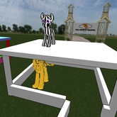 single equine stall cel-shaded with gate mesh