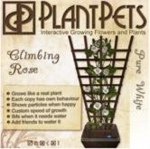 PlantPet Seed [Climbing Rose *Pure White*]