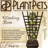 PlantPet Seed [Climbing Rose *Joyful Yellow*]