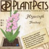 PlantPet Seed [Hyacinth *Fondant*] updated 2019
