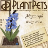 PlantPet Seed [Hyacinth *Delft Blue*] Updated2019