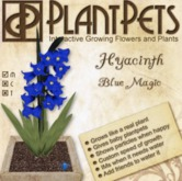 PlantPet Seed [Hyacinth *Blue Magic*]