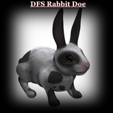 DFS Texture - DFS Rabbit Doe