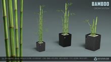 BAMBOO Plant (GROW SYSTEM) [NeurolaB Inc.]