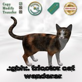.:GBH:. Mesh tricolor cat wanderer