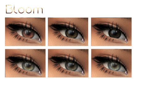 BLOOM - Eyes INKY Collection MESH-EYES/LELUTKA/CATWA Applier