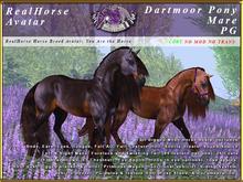 *E* RealHorse Avatar V2 - Dartmoor Mare PG