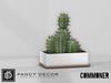 FD & Commoner: Indio Cactus Planter