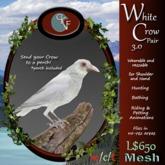 CKit Falconry White Crow Pair 3.0