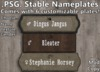 .PSG. Stable Nameplates (Low Impact Custom Signs)
