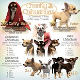 JIAN Cheeky Chihuahuas BOX 9. Black Wanderer