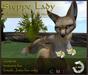 Corsac fox Mod - (WEAR ME)