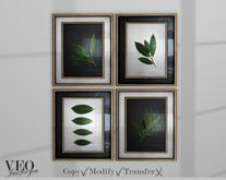 """VEO//  Frame """"Forgotten new"""" - gold (4 frames)"""