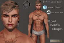 TFS - Brad Bento Shape for Akeruka Deluxe Clay Bento Head