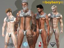 boyberry Disco Dick