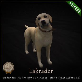 [C] Animesh Follower - Labrador (Wear)