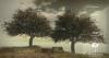 LB Fig Tree Animated 4 Seasons