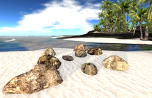 AI Designs Mesh Beach Rock Grouping 2