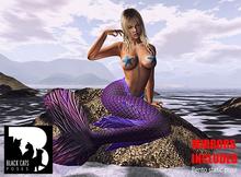 Black Cats poses - Mermaids 5 + mirror
