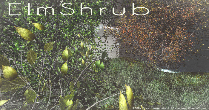 LB ElmShrub Animated 4 Seasons Mesh