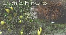 LB ElmShrub Animated 4 Seasons Mesh