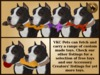 Vkc american staffordshire terrier black marketplace advert 07