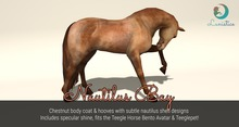 Lunistice: Nautilus Bay Body Coat & Hooves (for Teegle)